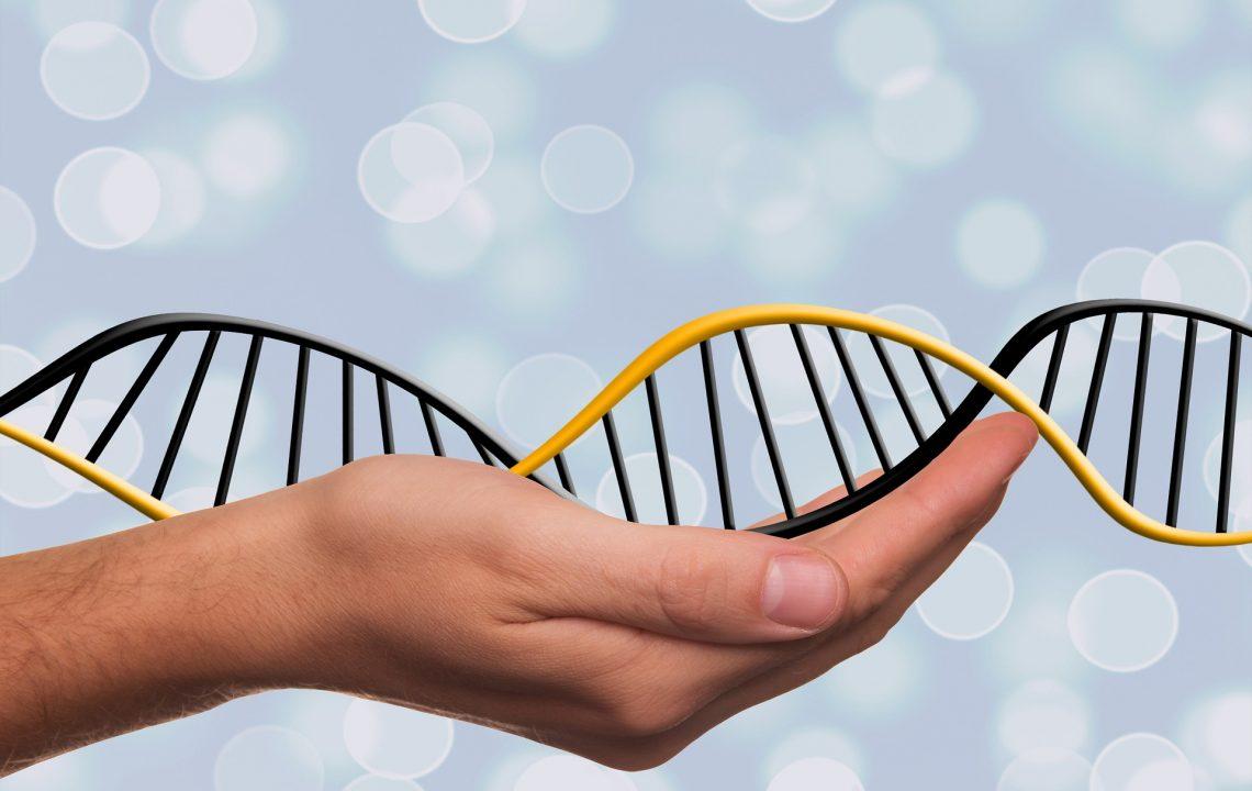 Základy epigenetiky