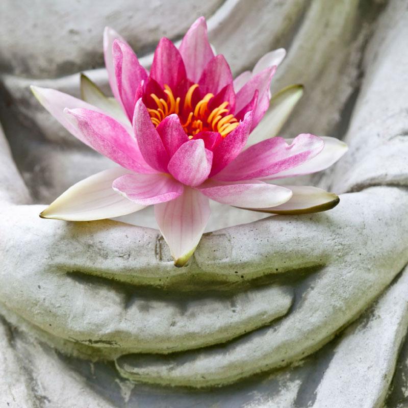 Jóga a meditace dokáží měnit naši DNA